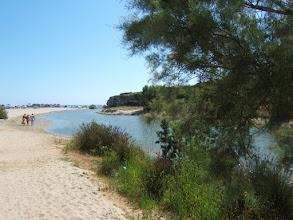 Photo: Der Strand von Son Bauló/ Can Picafort ( siehe auch www.es-coscois.de )