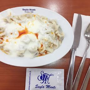 日本では滅多にお目にかかれない!意外にも美味しいトルコ料理3選