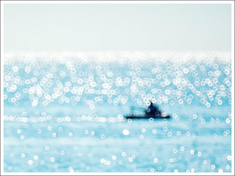 Il Mare di renzodid