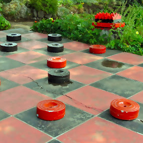 Checkerboard by Shawn Vanlith - Artistic Objects Other Objects ( checkerboard, checkers )