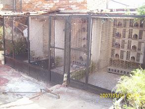 Photo: 3 de mis palomares de cría.