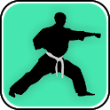 Learn Kung Fu Techniques icon