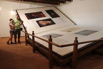 """Photo: Szinpetriben lelhető fel a 2010. év Guinness-rekordja, """"A világ legnagyobb könyve"""""""