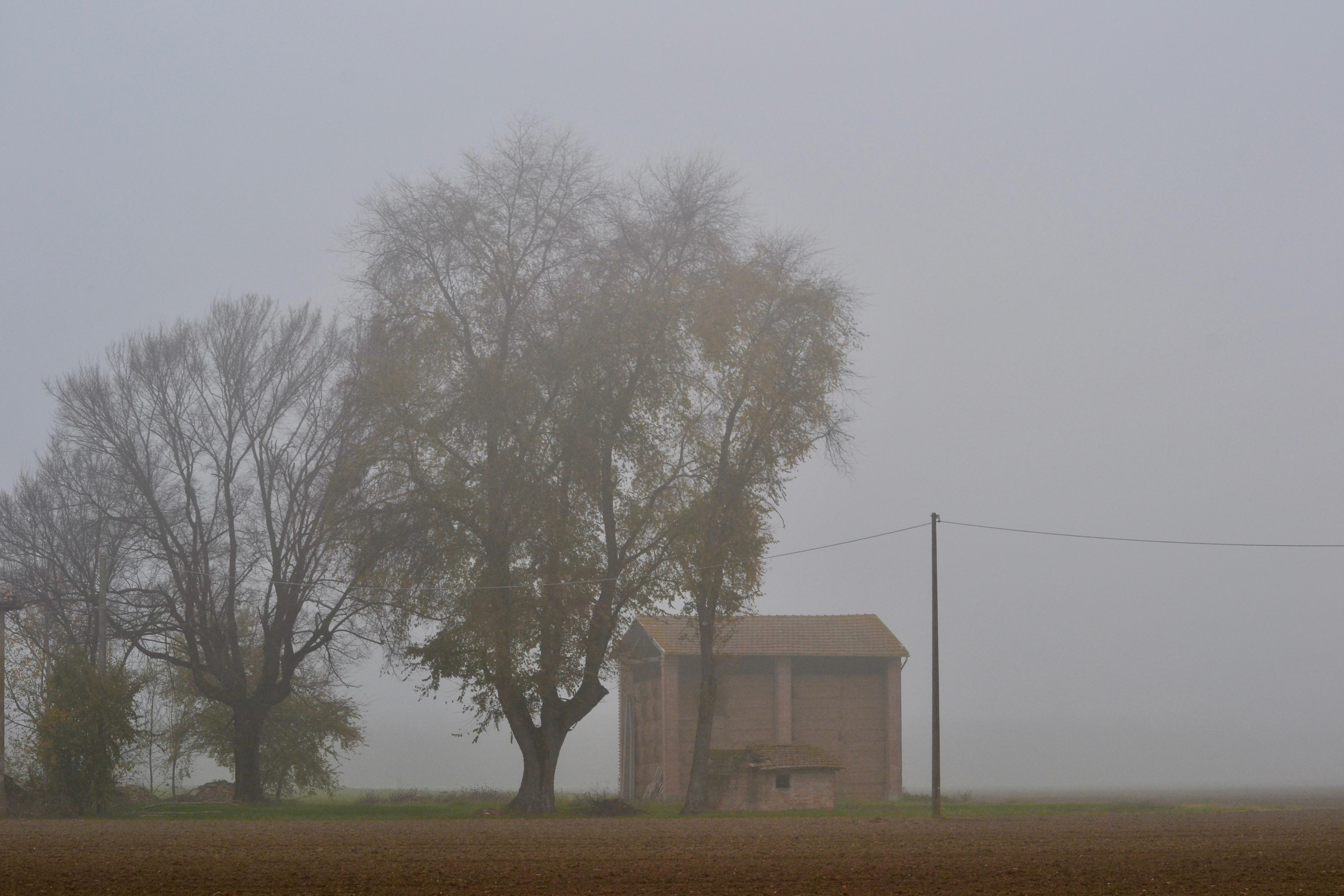 i fantasmi della pianura di giuseppedangelo