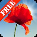 Poppy Field Free icon