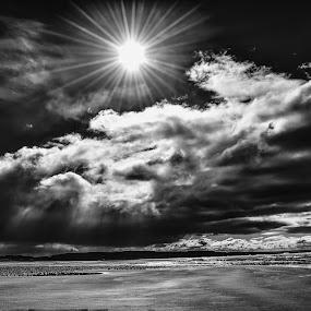 Ynyslas beach by Elaine Delworth - Black & White Landscapes