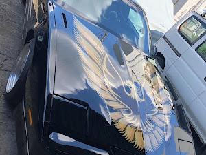 PONTIAC_FIREBIRD  TRANS-AM GTAのカスタム事例画像 とらりんさんの2019年09月08日00:12の投稿