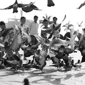 Kelihatan sekumpulan pelancong dan kanak2 tempatan memberi makanan kepada burung2.. by Dean Hakeem - People Street & Candids