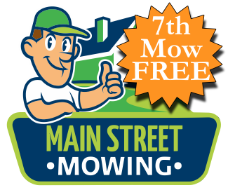 Discounted Lawn Mowing Services