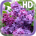 Lilac Flower LWP icon