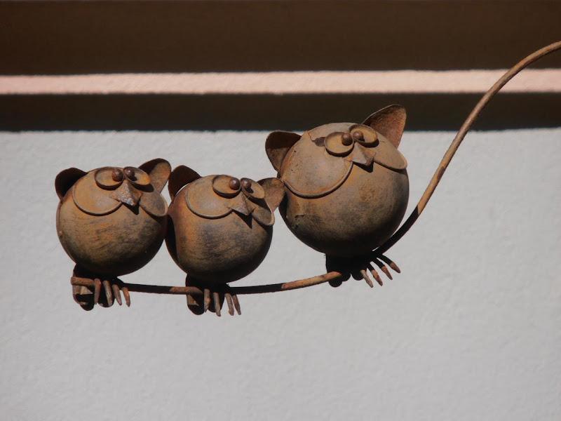 I tre gufetti di supergigi