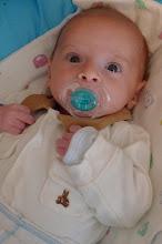Photo: 7 weeks old.
