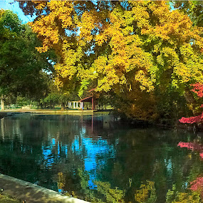 by Danny Bee - Digital Art Places ( mooney grove park, tulare, water, lake )