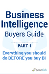 BI Buyers Guide