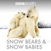 Snow Bears & Snow Babies