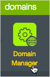 Domain Manager button