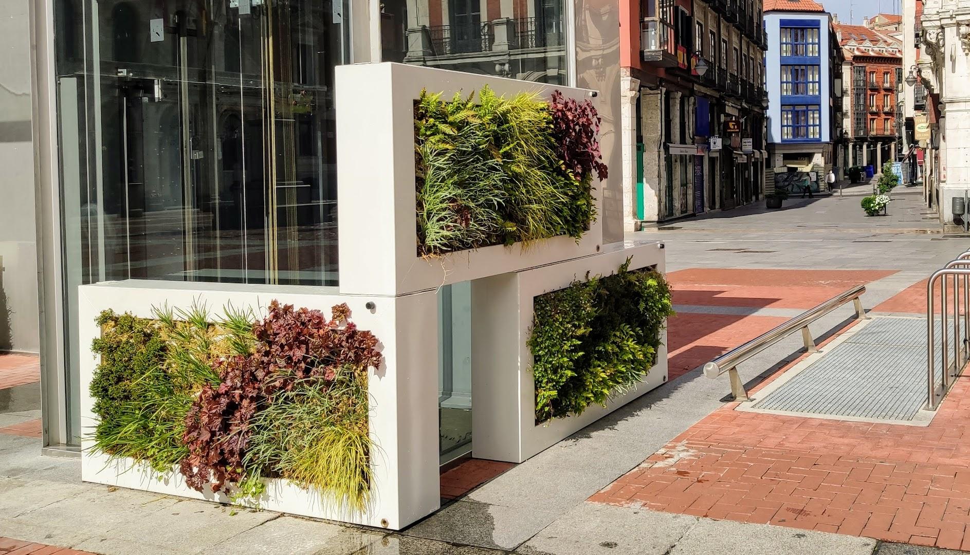 Jardines Leaf.Box instalados en Valladolid que forman parte del proyecto UrbanGreenUp