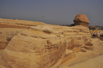 Photo: Sphinx looking toward Cairo