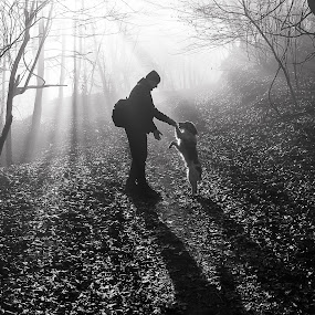 Friends on the mountain path by Dubravka Krickic - Black & White Street & Candid ( mountain, friends, black and white, fog, croatia, path, forest, dog, woods, shadows, man,  )