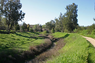 Photo: North Davis (Covell) Canal Peregrine Ave Access
