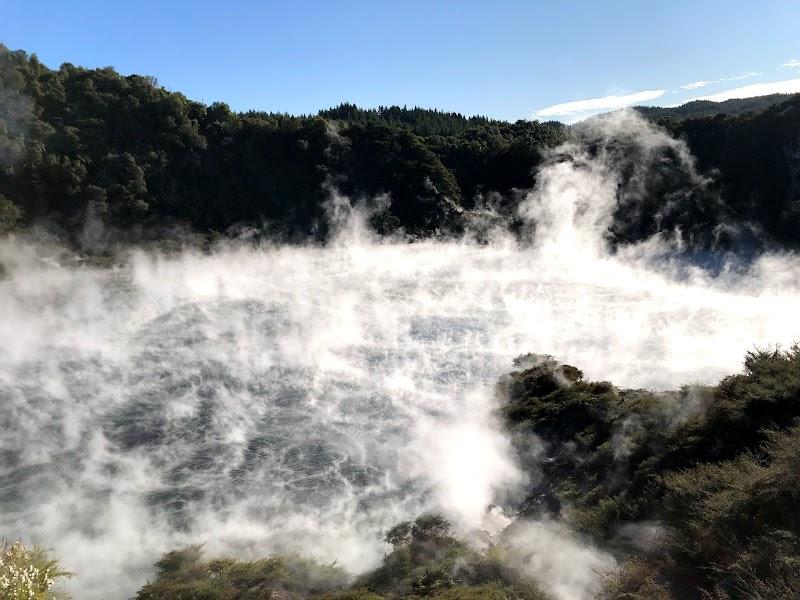 Rotorua 2020 (Waimangu & Kuirau Park)