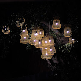 Garden Lights by Beh Heng Long - Artistic Objects Furniture ( lamp )