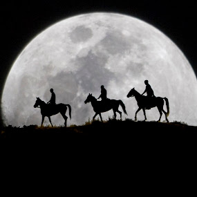 by Ercan Kuru - Black & White Abstract ( stroll, moon, horse, riding a horse, full moon, equestrian,  )