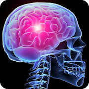 Human Anatomy Quiz Test Your Knowledge Trivia