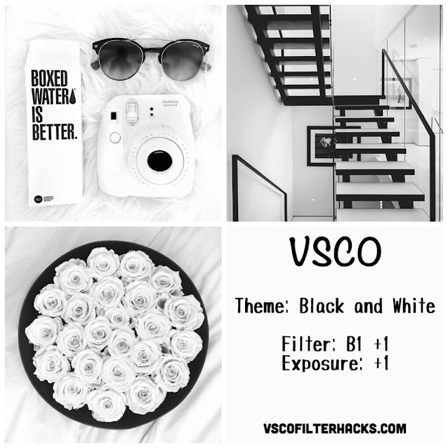 black and white Instagram feed VSCO filter B1