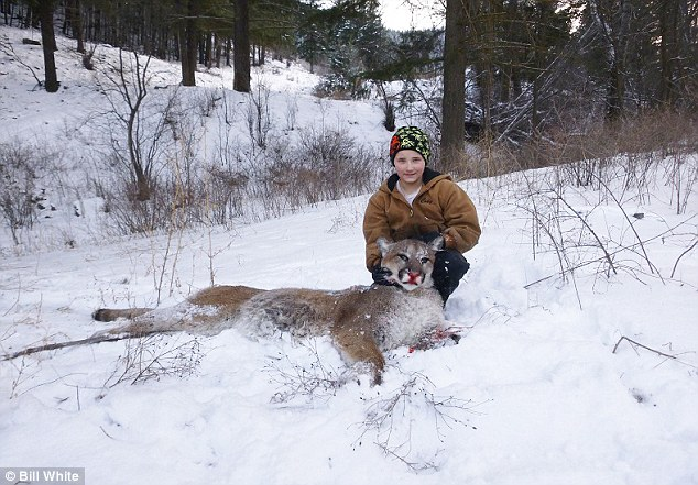 Trophy: Cody White, 9, gunned down this 125-pound male cougar earlier this month under the supervision of a game warden