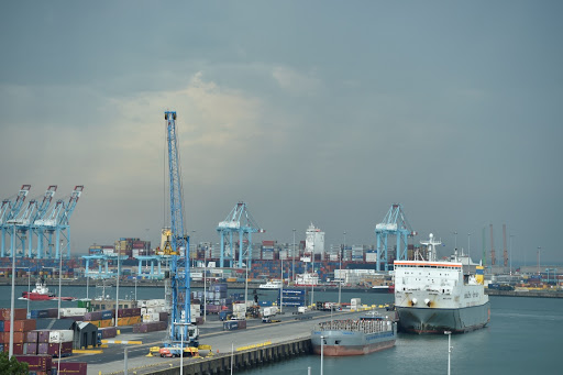 Brexit fog worse than no-deal risk, says Belgian port chief