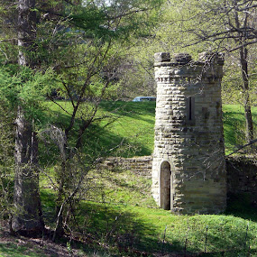 Queen's Rook by Pete Bobb - Buildings & Architecture Decaying & Abandoned ( spring green, pittsburgh, chess, children's playhouse, abandoned tower )
