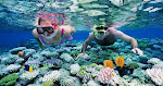 andaman adventure package from hyderabad