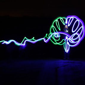 by Scott Valenzuela - Abstract Light Painting ( abstract, light painting, color )