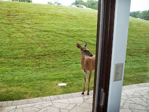 Photo: Right outside my room.