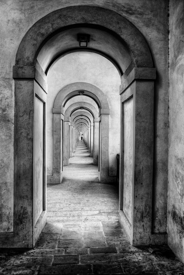 Vanishing Point by Keith Sutherland - Buildings & Architecture Architectural Detail ( b&w, florence, corridor, vassari, italy,  )