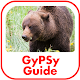 Canadian Rockies GyPSy Guide Android apk