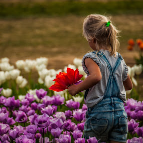 Among the tulips by Ivan Johnson - Babies & Children Children Candids (  )