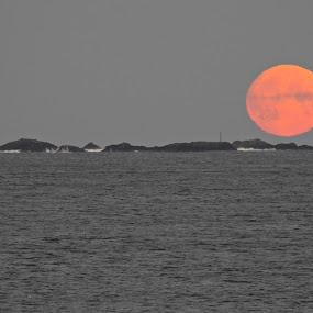 Morgen rød Måne by Karl-roger Johnsen - Landscapes Waterscapes