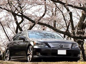 LS  600hL・UZ・Lセレクト・4T5・4人乗りのカスタム事例画像 🐺一匹狼🐺【Jun Style】さんの2020年04月03日18:26の投稿