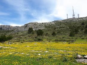 Photo: Serra d'Alfàbia (hike 48)