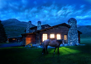 Photo: An Evening Stroll Around the Cabin - Montana  I took a dusk walk around the main cabin. The horses come graze all around the meadow in the evening... I finally convinced one of them to stand still for a bit.  from the blog at www.stuckincustoms.com