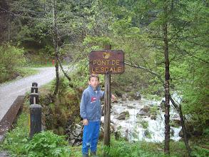 Photo: Prima del ponticello abbandoniamo la forestale per il sentiero.
