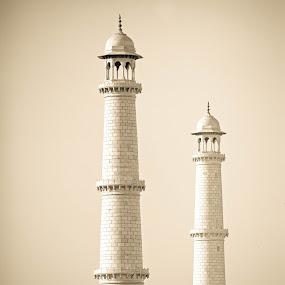 Twin tower by Prithiviraj Kiridarane - Buildings & Architecture Other Exteriors ( tower, tomb, tajmahal, agra, india )