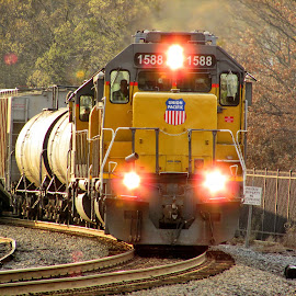 The Local by Rick Covert - Transportation Trains ( color, locomotive, local, trains, arkansas )