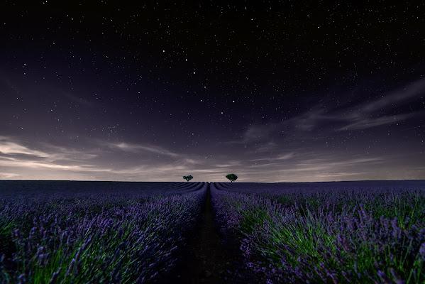Il suono del silenzio di Nico Angeli Photography