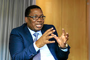 MEC Panyaza Lesufi and the Gauteng education department will be investigated by the public protector, if the IRR gets its way.