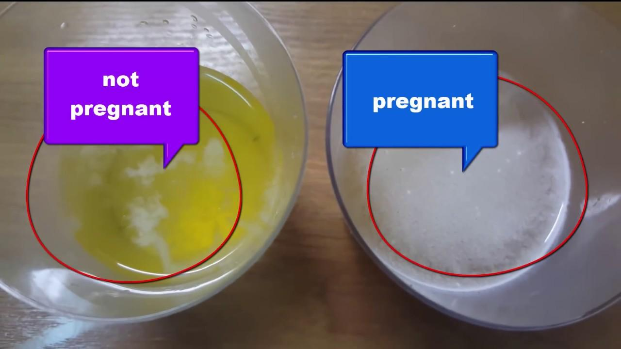 a homemade pregnancy test with salt - YouTube