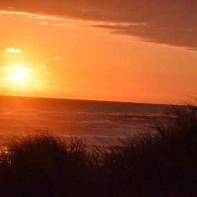 Sunset by Jay Hathaway - Landscapes Sunsets & Sunrises ( ocean, sunset, sunsets, water, landscape )