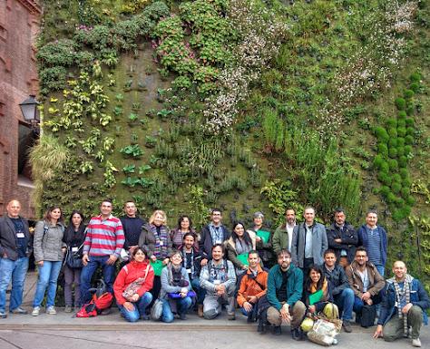 Curso de jardines verticales y cubiertas vegetales en madrid for Jardines verticales espana